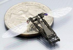 robot-bee-robobee_11573.jpg